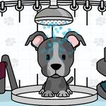 Pet Salon Doggy Days